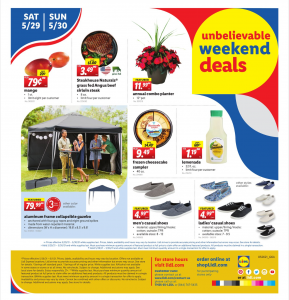 Lidl Weekend Deals Flyer May 29 - May 30, 2021